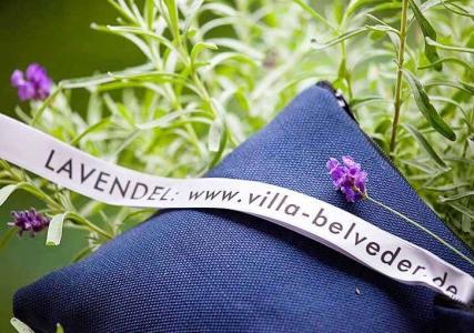 Lavendel-Duftkissen aus der Villa Belveder