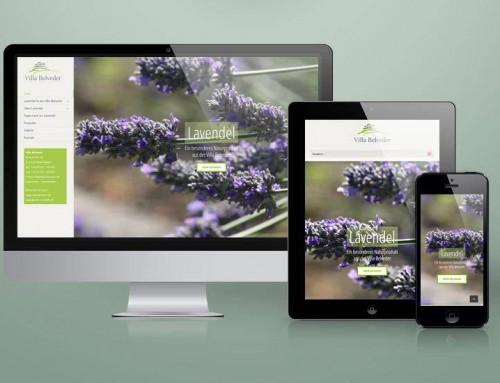 Lavendel and more Website und Online-Shop