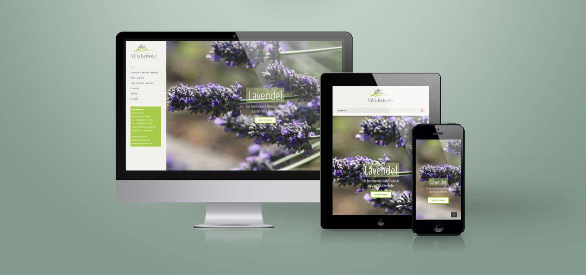 Website Lavendel and more