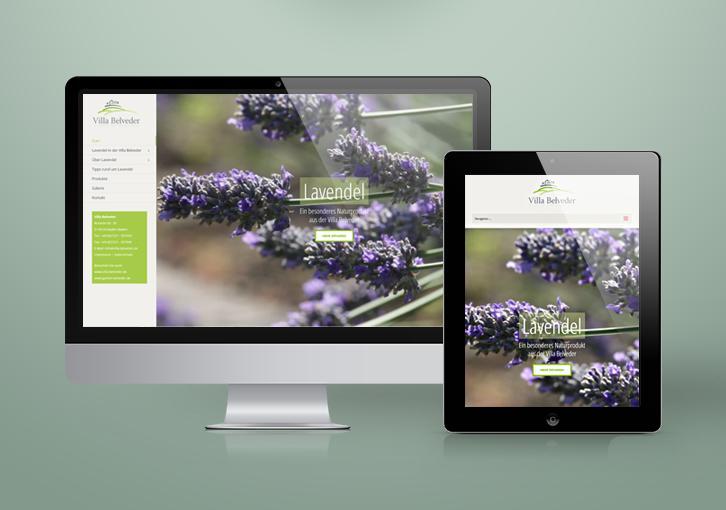 Lavendel and more - BYTECOUNT Portfolio